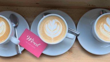 startup a coffee shop alternative milks price